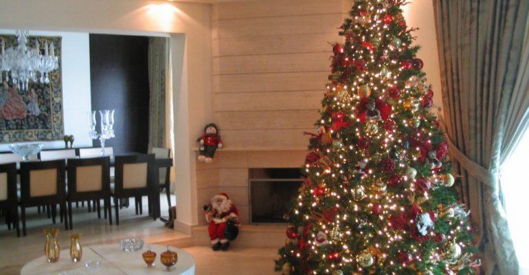escolher-a-árvore-de-Natal